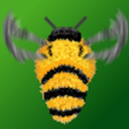 Remember Bee