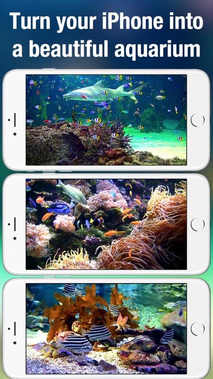 Aquarium Live +: Nature & coral reef ocean scenes