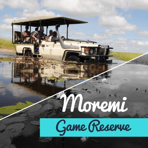 Moremi Game Reserve Travel Guide