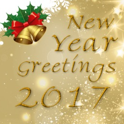 Happy New Year Greetings Card: 2017 Holiday Wishes