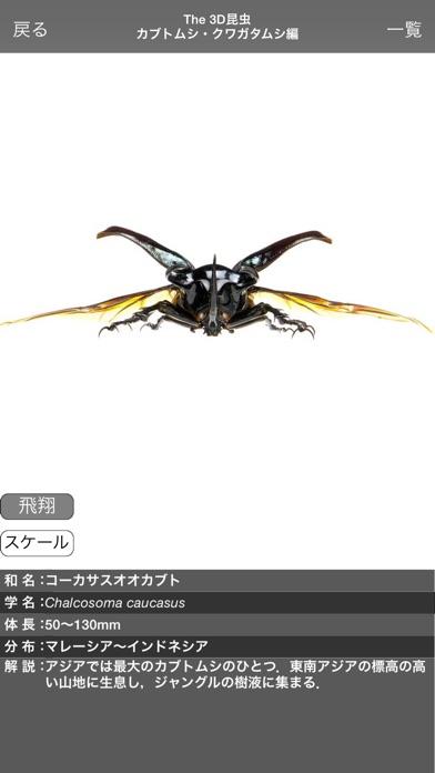 The 3D昆虫 I screenshot1