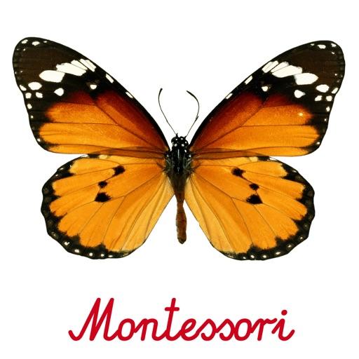 Montessori Preschool Puzzle 123 Kids Fun-Full