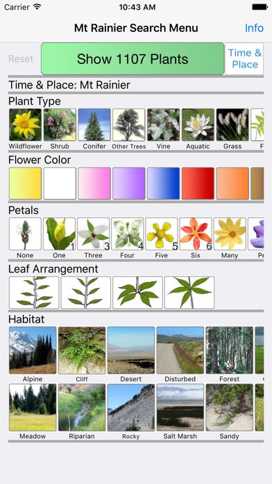 Mt Rainier Wildflowers screenshot one