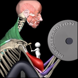Muscle & Motion Strength