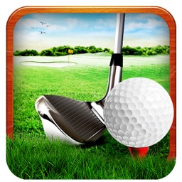 Professional Golf Play : The Golf Championship