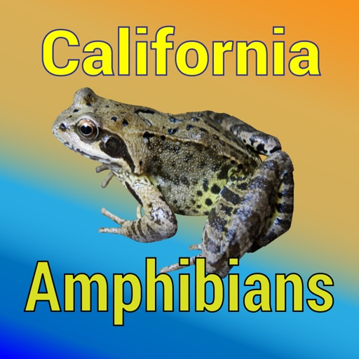 California Amphibians - Guide to Common Species