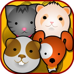 Cute Little Pet Roundup Adventure - Find and Save Lost Street Pets