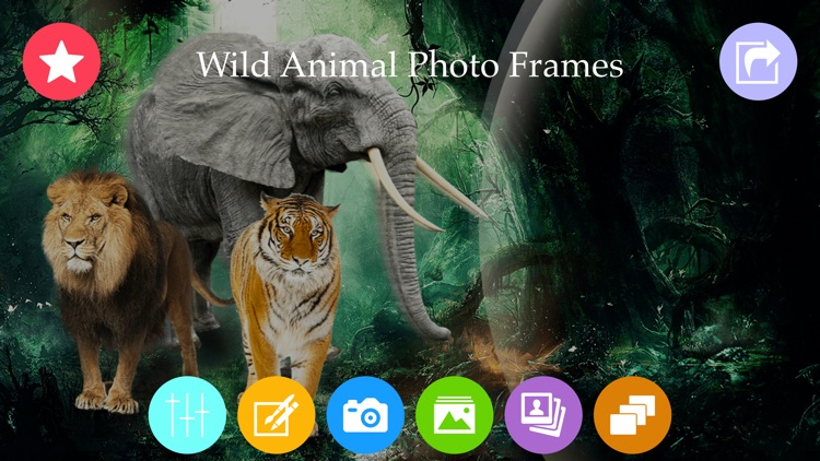 Wild Animal Photo Frames Photo Editor By Nirav Patel