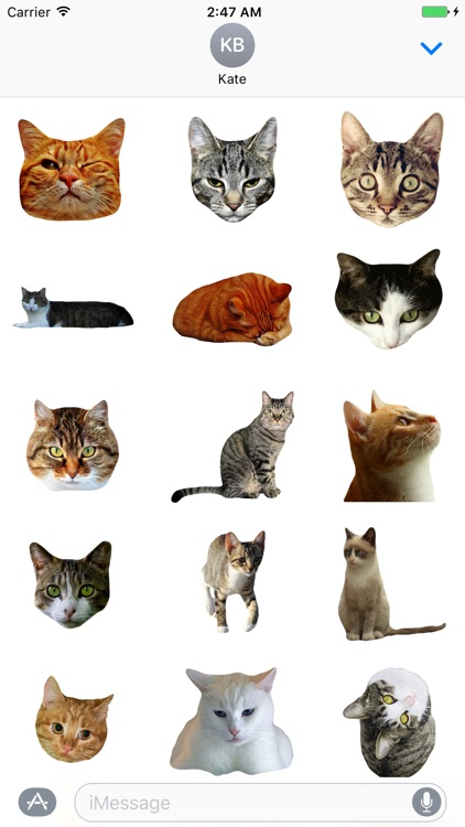 Cat Stickers for iMessage : Cats & Cat Heads screenshot-1