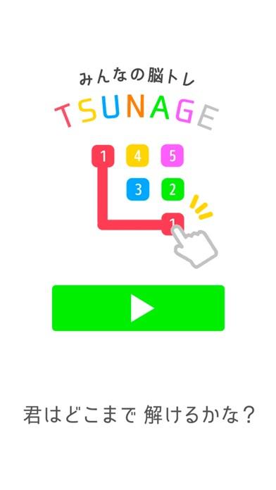 点击获取connect puzzle -TSUNAGE-
