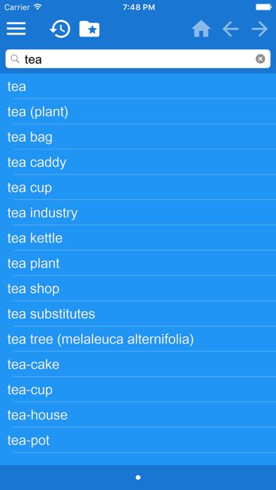English Polish Dictionary screenshot one