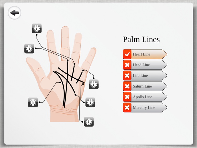 Palm Reading Premium HD - palmistry & chirology