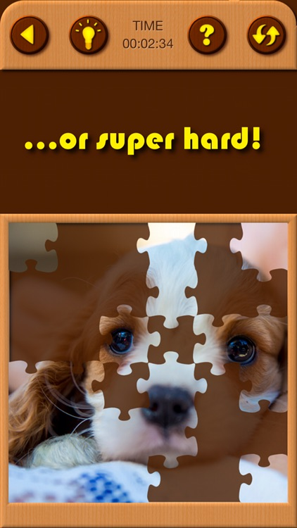 Cute Puppy Jigsaw Puzzle Games screenshot-3