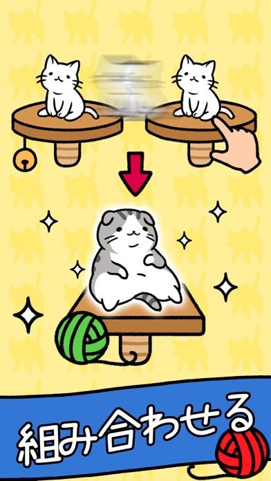 猫コンドミニアム