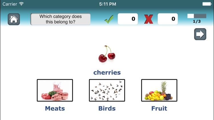 Category Therapy Lite - Aphasia Speech Rehab screenshot-2