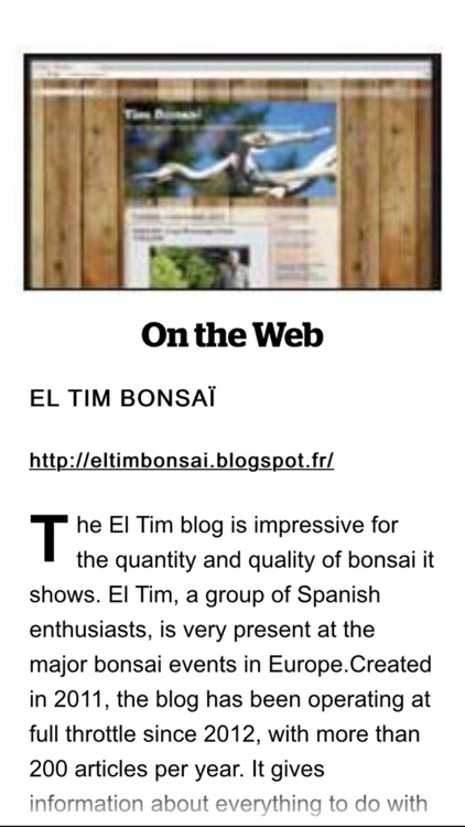 Esprit Bonsai international