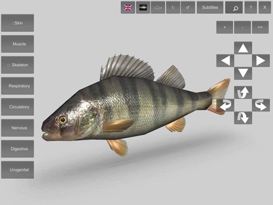 3d Fish Anatomy App Price Drops