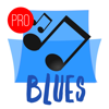 Blues Music Pro - Radio, Blues Songs & Festival News