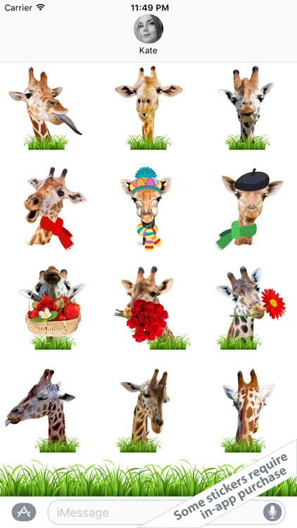 Free Stickers - Live Giraffes 2 screenshot-3