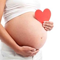 Pregnancy Guide - Week By Week