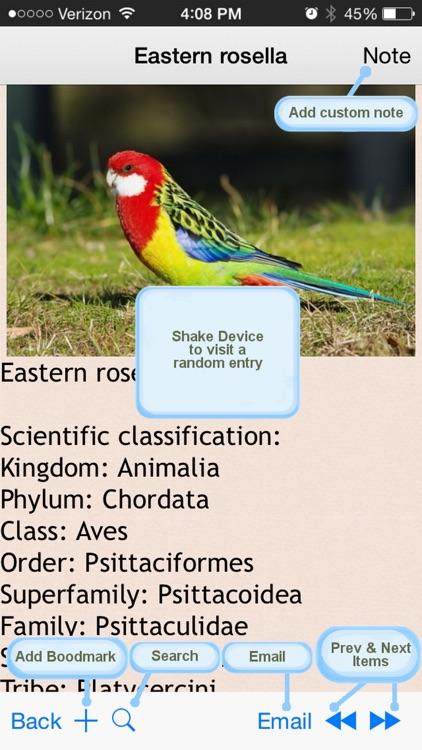 Parrots Bible