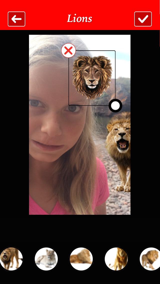 Lion Booth screenshot three