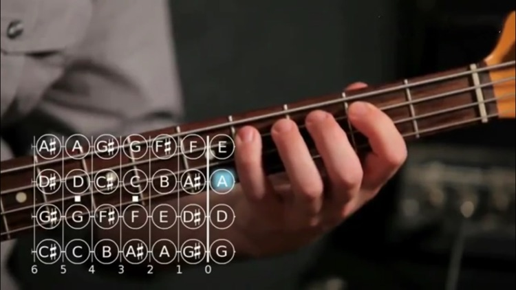 Play Bass screenshot-2