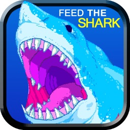 Feed The Shark