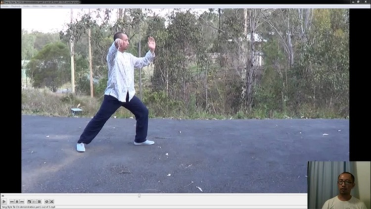 Learn Tai Chi screenshot-3