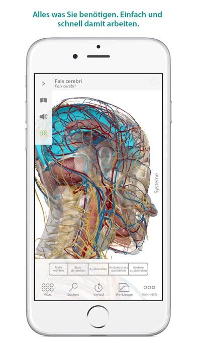 Atlas der menschlichen Anatomie - Revenue & Download estimates ...