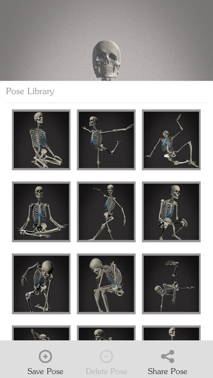 Skelly - Poseable Anatomy Model for Artists screenshot-3