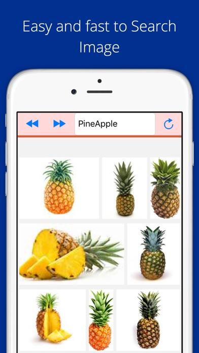 Screenshot #1 pour Universal Image Search Pro
