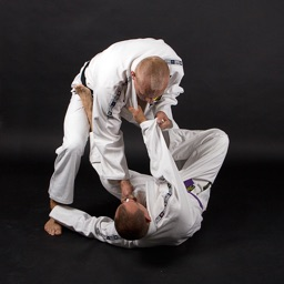 Brazilian Jiu-Jitsu (BJJ) - The Best Martial Arts For a Real Street Fight