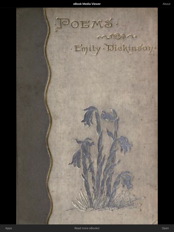 an interpretation of emily dickinsons poem i An interpretation of emily dickinson's poem #315 emily dickinson had an interesting life, and is a profound woman in the history of america and literature.