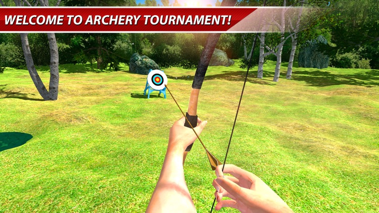 Archery Shooter 3D: Bows & Arrows