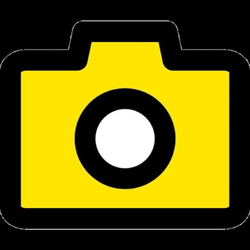 365 days in photos