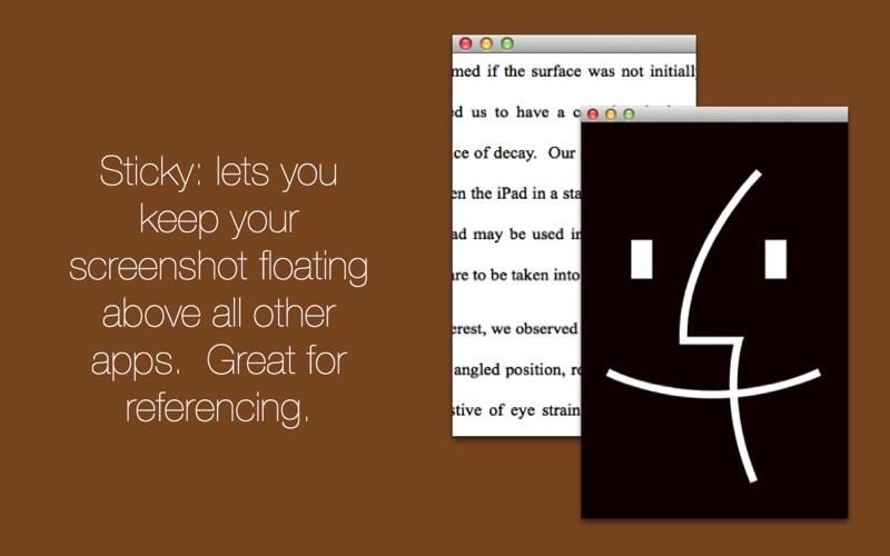 Screener: Screenshot Utility скриншот программы 3