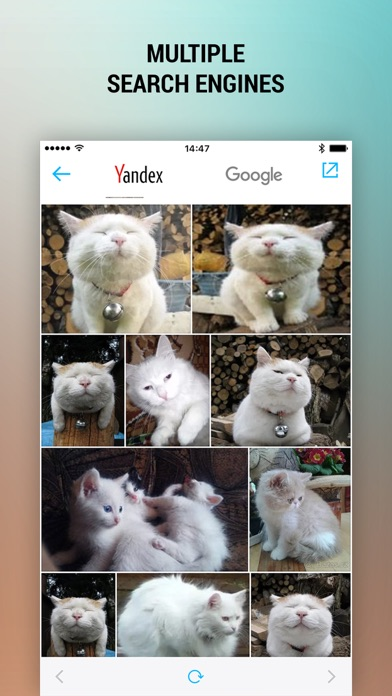 Reverse Photo Search – Free And Easy Image Search Screenshot on iOS