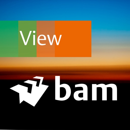 BAM International View