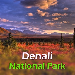 Denali National Park Tourist Guide