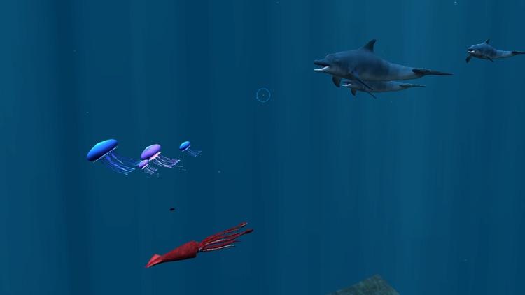 探秘海洋世界