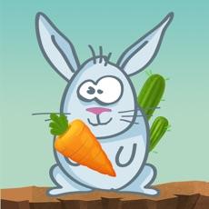 Activities of Jump Bunny Jump