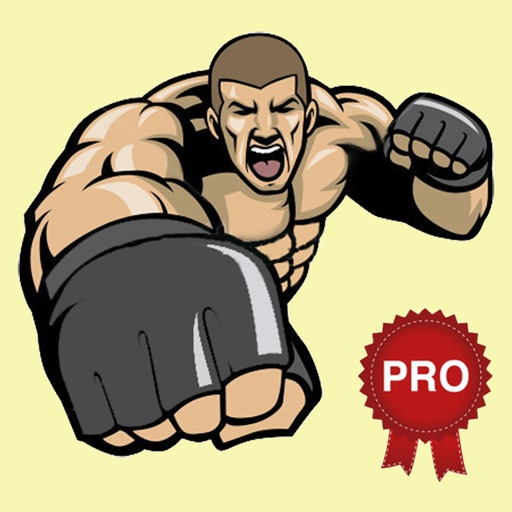 MMA Fighting Combat Strength Workout - PRO Version - Complete Fitness  routine with callisthenics exercises by Laurentiu Gheorghisan