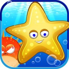 Activities of Save The Starfish