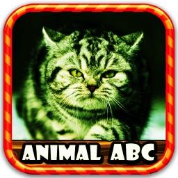 Figures Animal ABC