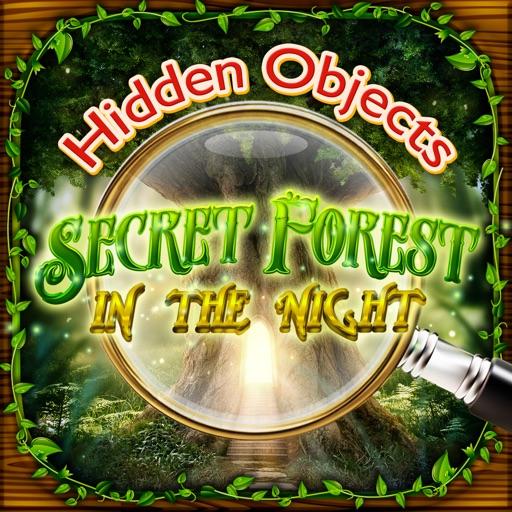 Hidden Objects - Secret Forest in the Night