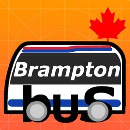Brampton Transit On