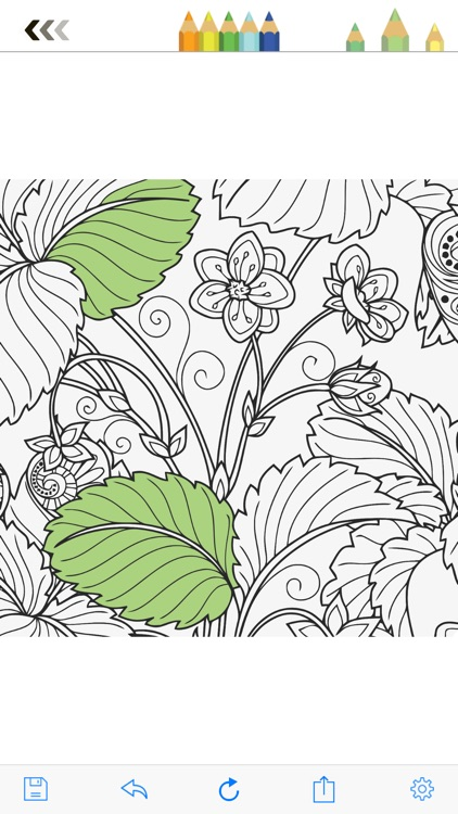 MyColor: Coloring Book for Adults