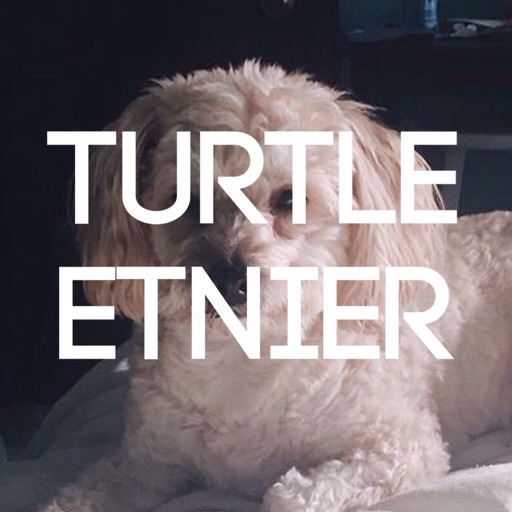 TURTLE ETNIER