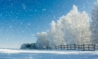Winter Wonderlаnd
